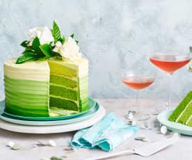 20th anniversary ombré cake