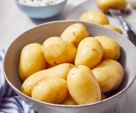 Kartoffeln für viele