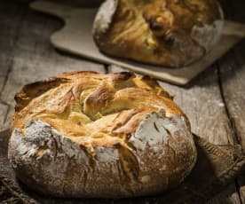 Brot Venezia
