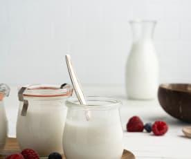 Yogurt al cocco (vegan)