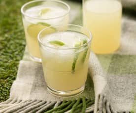 Ginger and Lime Fizzy Refresher