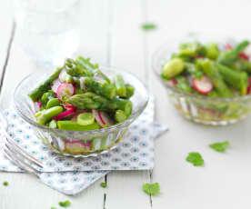 Salade de fèves, radis et asperge