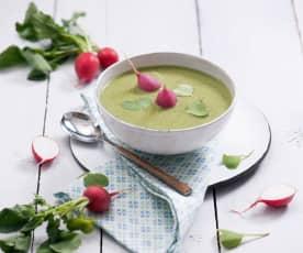 Zupa krem z liści rzodkiewki z rzodkiewkami na parze