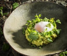Cremige Polenta mit Wildkräuterparmesan und pochiertem Ei