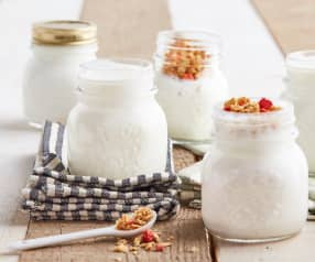 Yogurt naturale (con fermenti per yogurt)