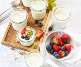Vanille-Erythrit-Joghurt