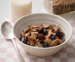 Allergen Free Breakfast Cereal