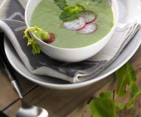 Polévka z ředkvičkových listů