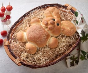 Pan coniglio