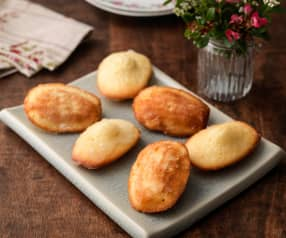 Lemon Drizzle Madeleines