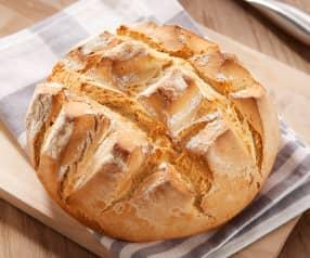 Snel brood