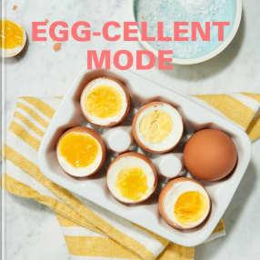 Eggscellent Egg Cooker