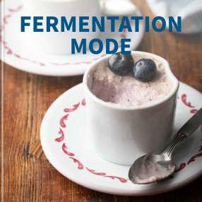 Fermentation Mode