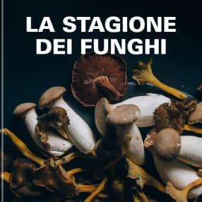 La stagione dei funghi