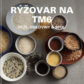 Rýžovar na TM6