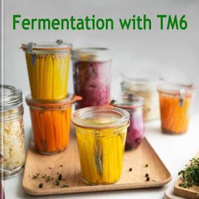 Fermentation with TM6
