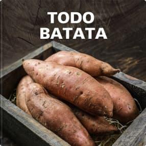 Todo batata